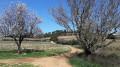 Pierrefeu et la cabane des gardes (GR®51)