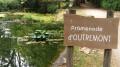 Le Vésinet entre Seine, rivières et pelouses