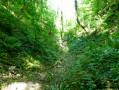 La Côte Blanche à Ernemont-la-Villette