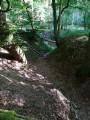 Mare aux canards du Bois de Vert Mont