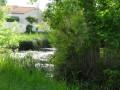 Boucle découverte : la Seudre douce à Saujon