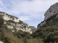 Retour forêt de Cèdres