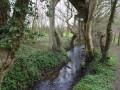 Rivière de Bavay chemin des foulons