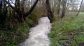 Rivière de Flexanville