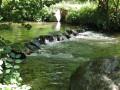Rivière La Fure