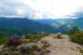 Roc dels Pins