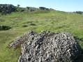 Sedimentary rock on the Rhune