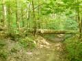 Route d'Auteuil