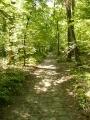 Route des Brulis