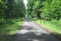 Route forestière Duhamel