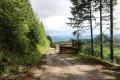 Route forestière sous le Puy de Chauzeix
