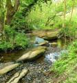 Rowarth river & moorland loop