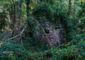 Ruine d'une caborne