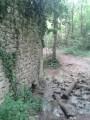 Ruines de la Charlesse