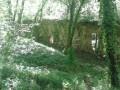 Ruines du monastère de Prébayon