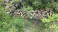 Ruines vallon de la Barasse