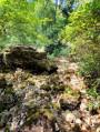 Ruisseau asséché