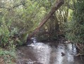 Ruisseau de Bully