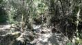 Ruisseau de Fontjalla à sec