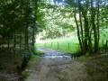 Ruisseau de Ladoux