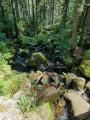 Ruisseau de Merelle