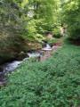 Ruisseau de Salabe