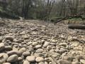Ruisseau des Echets