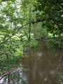 Ruisseau du Brezou