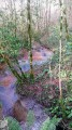 Ruisseau du Budel
