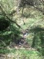 Ruisseau du Glane de Malesse