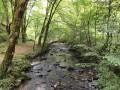 ruisseau du Maumont blanc