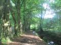 Ruisseau du Sart