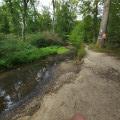 Ruisseau Eberbach
