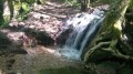 Ruisseau forêt, avant église