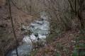Ruisseau Rolland en hiver