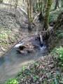 Des bords du Tarn à Varennes en boucle