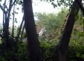 Le bocage du Bessay à Saint-Cassien