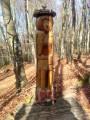 sculpture bois hêtraies