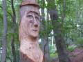 Découvrir les hêtraies sur la commune de Pavezin