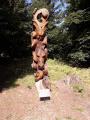 Tour des pierres de Chabrières