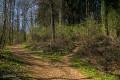 Sentier à droite