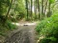 Sentier à prendre pour éviter la route goudronnée