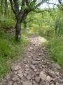 Circuit nature et patrimoine autour du Rance au départ de Pousthomy