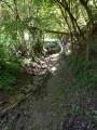 Sentier de Balmones