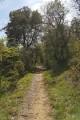 Sentier de Larroque