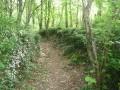 Sentier de montée