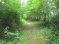 Sentier du Buffle à Étroeungt