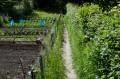 Sentier du chou qui descend à travers un jardin