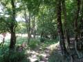 Sentier du Frachet