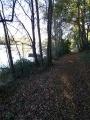 Sentier du Loiret